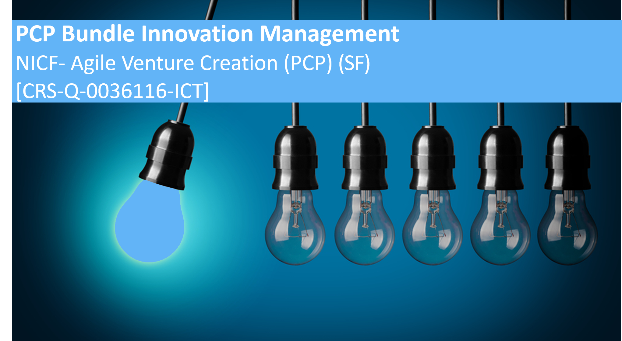 NICF-Agile Venture Creation (PCP) (SF) [Do not use] DIM-OutdatedMaster